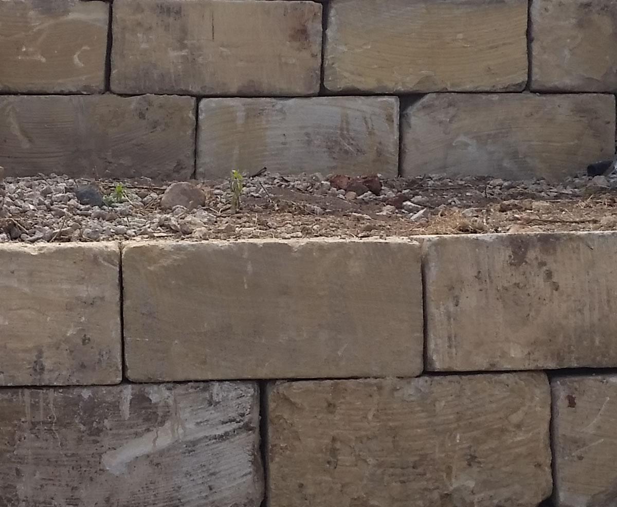 gold coast A grade sandstone walls